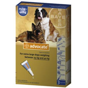 Advocate Spot On Flea Tick Mange Treatment For Dogs 25kg to 40kg