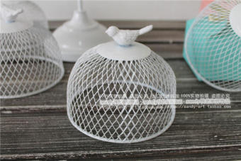 Bird Cage iron grille dessert mini Preserved Flower cake cover