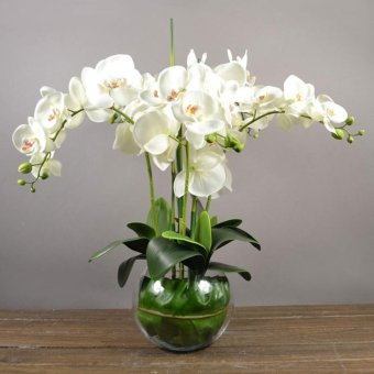BolehDeals BolehDeals Artificial Floral 12 Head Orchid Phalaenopsis Flower Home Garden Decor White