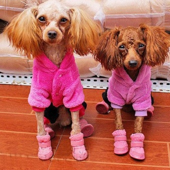 Cute Chihuahua Dog Shoes Puppy Warm Boots Shoes color:Pink size:S -intl - 3