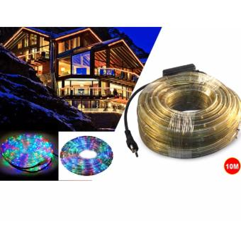 DAN DAN Mabuhay Star 10 meters Wonderful Colors LED Hose Light/Christmas Lights (Multicolor)