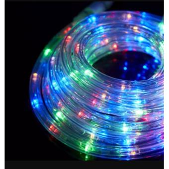 DAN DAN Mabuhay Star 5 meters Wonderful Colors LED Hose Light/Christmas Lights (Multicolor)