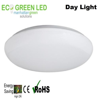 Ecogreen Prime Essentials 10 watt LED Ceiling light (Daylight)