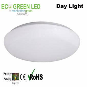 Ecogreen Prime Essentials 15 watt LED Ceiling light (Daylight)