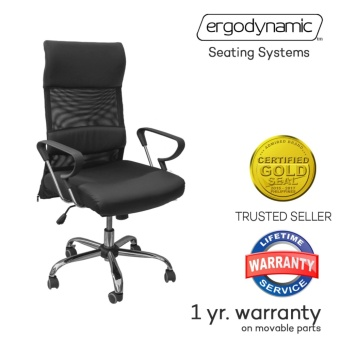 Ergodynamic EHC-128 Luxury Mesh Office Chair Furniture with LumbarBack Support (Black)