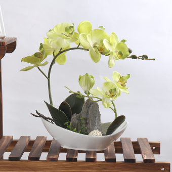 European model rockery potted artificial flowers Butterfly Orchid