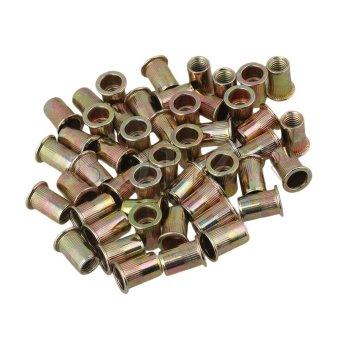 Flat Head Rivet Nut M10 Set of 50 (Gold)