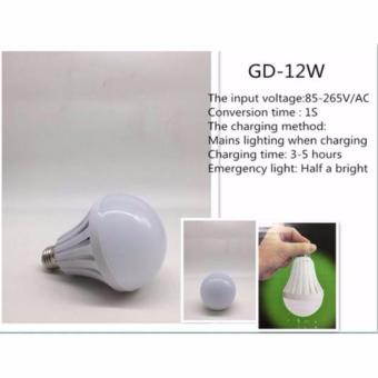 GD-12W Intelligent Led Emergency Bulb