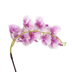 HengSong Beautiful Butterfly Orchid Flower Phalaenopsis Bouquet Purple - intl