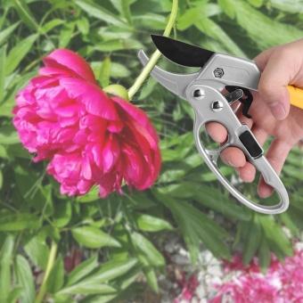 High Carbon Steel Pruning Shears Cutter Gardening Plant Scissor Branch Pruner Trimmer Tools - intl - 2