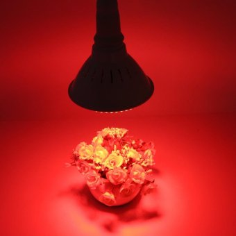 E27 168 LED Plant Grow Light Bulb Lamp (168Red) - intl Price Philippines