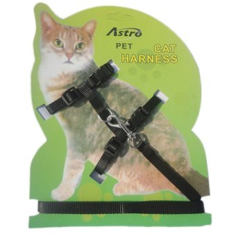 OEM Cat Lead Leash Harness Black Belt Strap Band Price Philippines