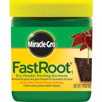 Miracle-Gro Fast Root Dry Powder Rooting Hormone Jar Price Philippines