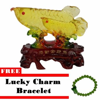 Lucky Charm Citrine Fish Decorative Gift w/ Free Lucky Charm Bracelet Price Philippines