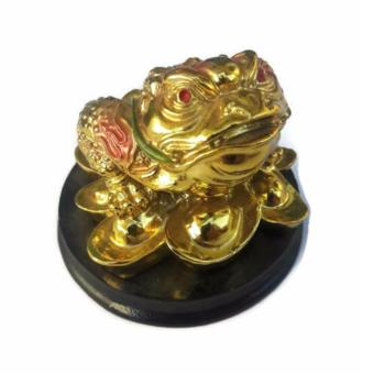 Be Lucky Charms Feng Shui Money Catcher Three Legged Lucky Golden Frog Ornament Price Philippines