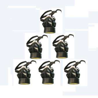 Meisons chemical respirator gas mask single (6pcs) Price Philippines