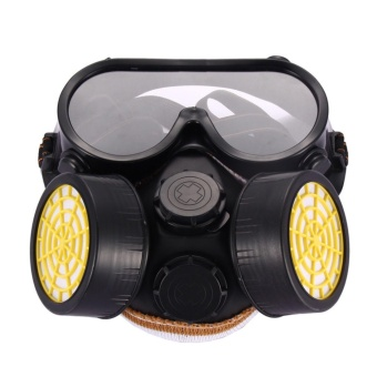 Industrial Gas Chemical Anti-Dust Spray Paint Safety Face MaskRespirator Glass - intl Price Philippines