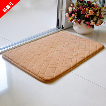 Into the doorway Hall rug absorbent mat