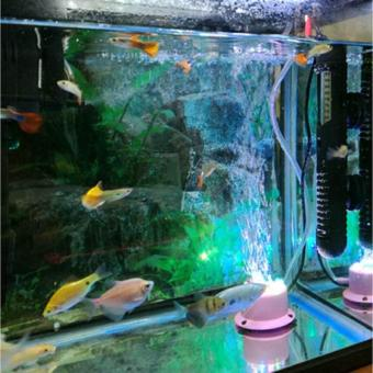 LED Air Curtain Stone Bubble Disk and Aquarium light Colorful Bubble Lamp Submersible Light Fish Tank Aquatic Accessory - intl - 4
