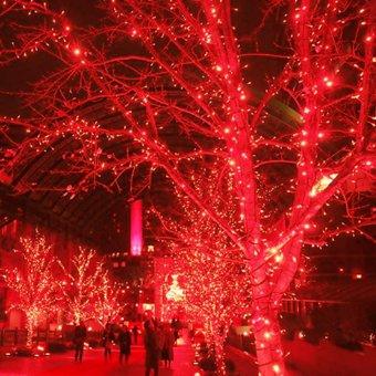 Led String Fairy Lights 10M 33ft 5V USB Powered (Red) - intl - 2