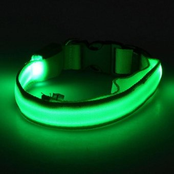 lights Cool Colorful Pet Dog Collar Night Safety LED Light-up Flashing Glow in the Dark Christmas Gifts - intl