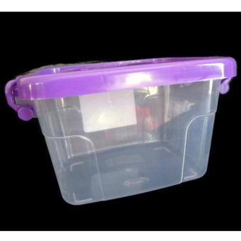 Modern Style Plastic Transparent Small Storage Box With Handle 276g