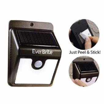 Motion Detection Solar Powered 4 LED Light