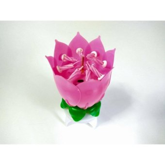 Musical Lotus Flower Rotating Birthday Candle Light Price Philippines