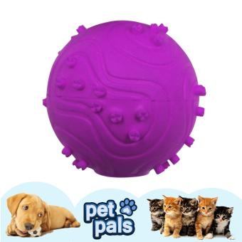 Petpals Squeeky Spike Rubber Ball Pet Dog Toy (Violet)