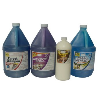 Powerclean Living Room Cleaning Product Set of 4 (Multicolor) Price Philippines