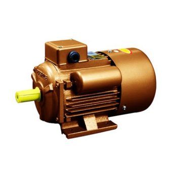 PowerHouse Single Phase Electric Motor Dual Capacitor HD (CopperWire) 2HP (PH-CO-100L-4-2HP) Price Philippines