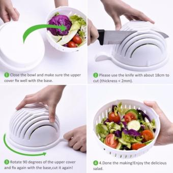 QF Salad Cutter Bowl 60 Seconds Salad Maker Vegetable Cutter Bowl Price Philippines