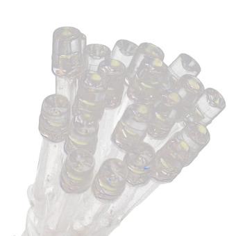 S & F 200 LED Web Net Fairy White Light for Christmas Wedding Party Garden (Intl) - picture 2