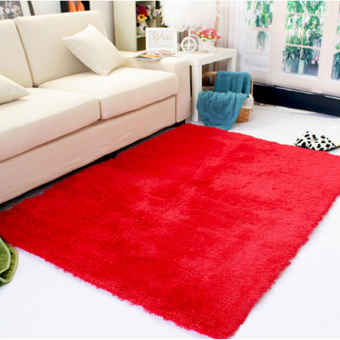 Shaggy Anti-skid Carpets Rugs Floor Mat/Cover 80*120cm (Red)