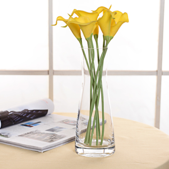 Simple European straight transparent glass hydroponic vase