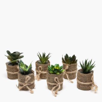SM Home Mini Plastic Plants (Set of 6)