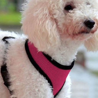 Soft Mesh Dog Harness Pet Puppy Cat Clothing Vest Pink S