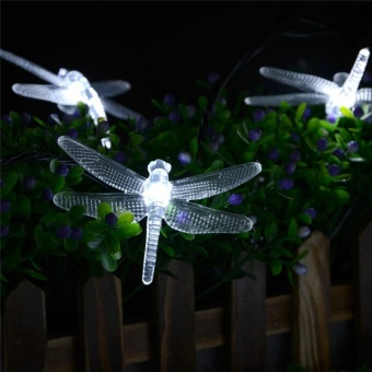Solar Lights 19.7ft 6m 30 LED 8 Modes Solar Light String DragonflySolar Fairy String Lights for Outdoor - intl