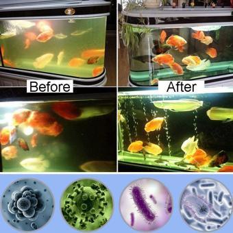 Waterproof Aquarium Fish Tank Submersible Light UV Sterilizer Lamp for All Water size:US Plug - intl - 3
