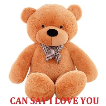 160CM Talking bear Stuffed Animal Teddy Bear Plush Soft Toy HugeSoft Toy Light Brown