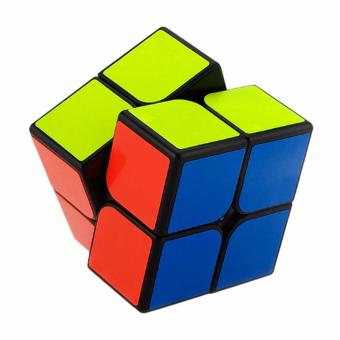 2x2 Rubik's cube (two layer magic cube)