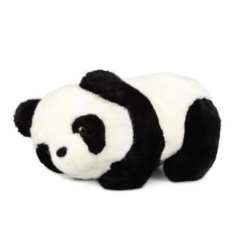 DHS Super Cute Soft Stuffed Panda 16cm (Intl)