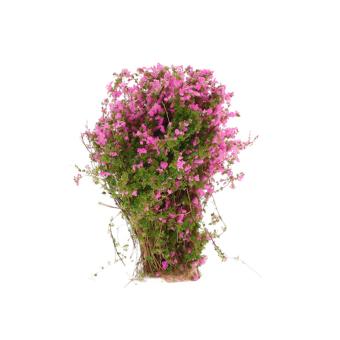 Flower Ground Cover Model Set of 4
