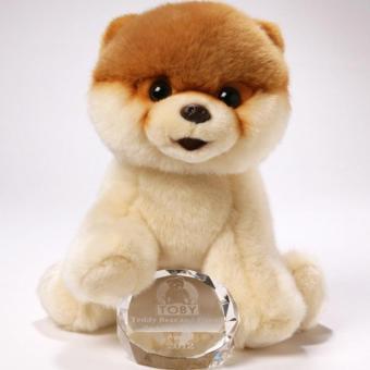 Gund Boo- World's Cutest Dog from Gund 9 IN - picture 2