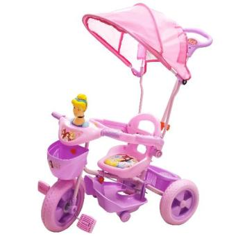 Princess 2 in 1 Trike with Shade 124 (2015).. Price Philippines