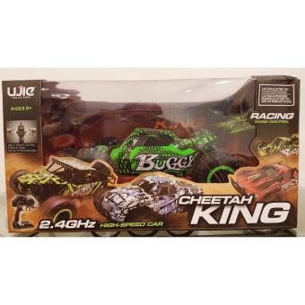 Remote Control High Speed Buggy Car 1:16 Scale (Green)