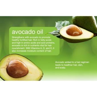 Beauty Secret Avocado Oil 50ml - 2