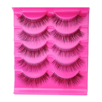 Fabulous 5 Pairs Natural Eye Lashes Extension Beauty Makeup Long Fake False Eyelashes - intl