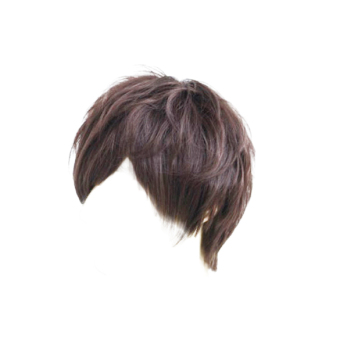Fashion Man Neutral Short Full Wig Dark Brown Straight Wig Cosplay