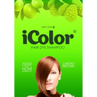 iColor Hair Dye Shampoo Chestnut Brown 300ml
